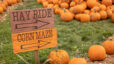 2021 Greater Lafayette Pumpkin Patches and Corn Mazes