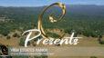 Concierge Presents… View Estates Ranch!