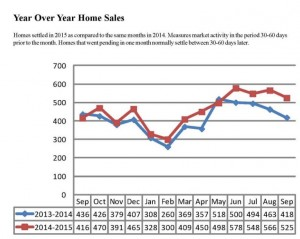 Year over Year Sales