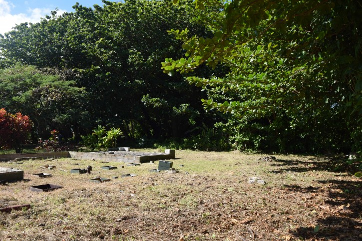 Haena Land For Sale Hanalei Kauai North Shore 11