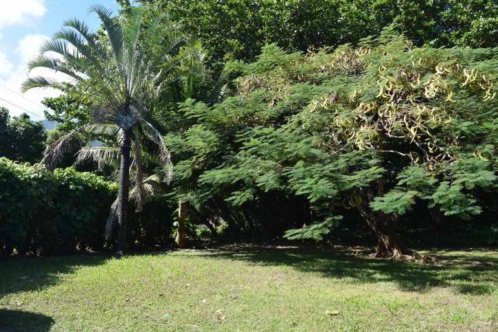 Haena Land For Sale Hanalei Kauai North Shore 24