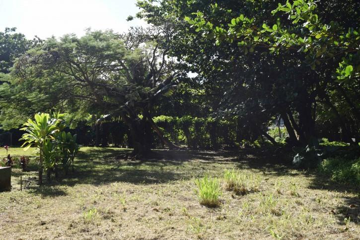 Haena Land For Sale Hanalei Kauai North Shore 3