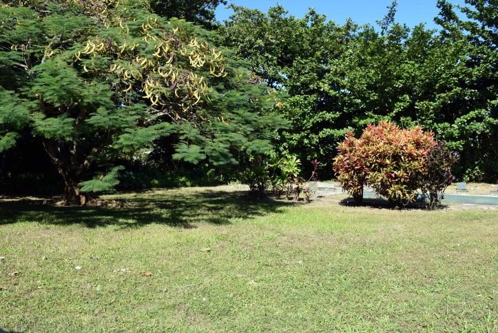 Haena Land For Sale Hanalei Kauai North Shore 4