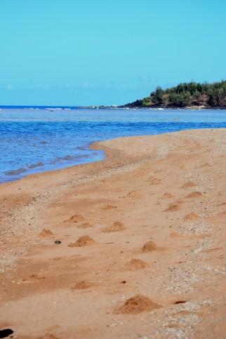 North Shore Kauai Haena real estate land for sale lot wainiha
