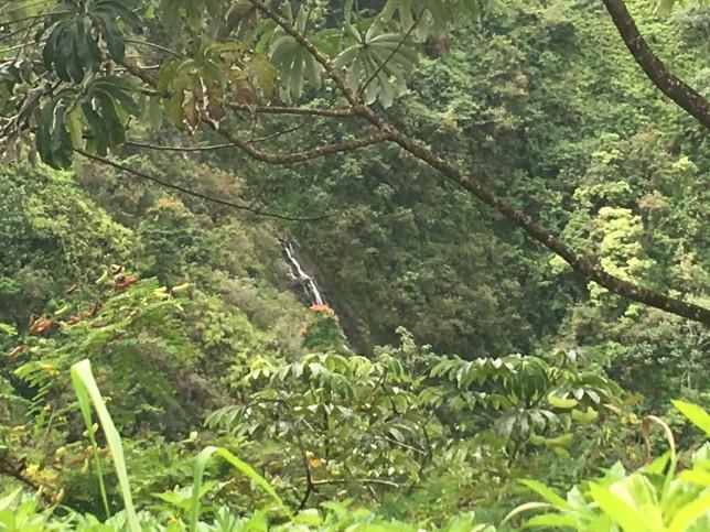 powerline trail waterfalls water falls kauai princeville aloha