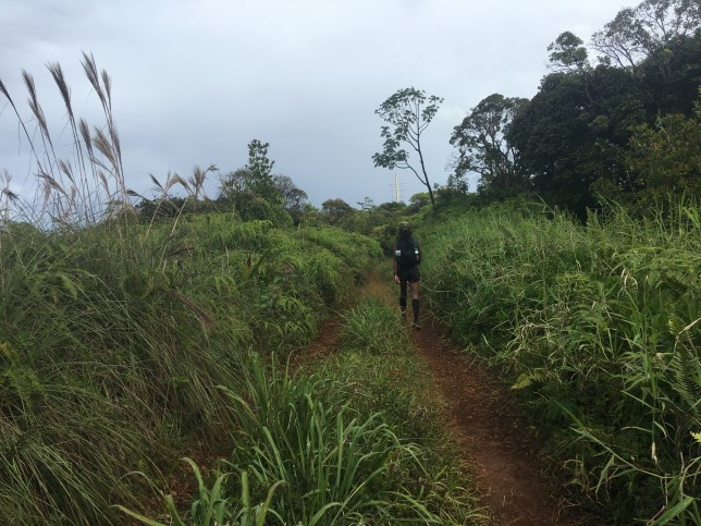 Thai sprints powerline power line trail
