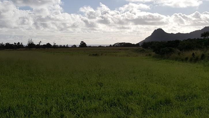 Villas at Puali Home For Sale Puhi Lihue Kauai Condo Brady Beyers 1 view