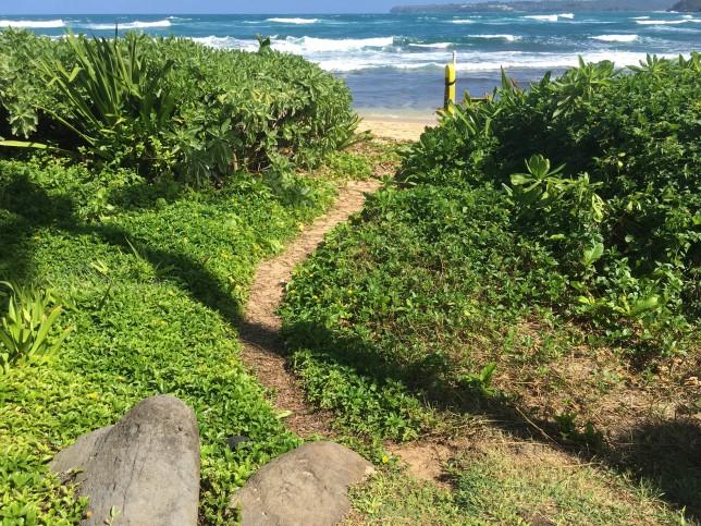 kauai beach condo north shore