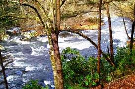 Waterfront / Riverfront | Smoky Mountain Properties:: The