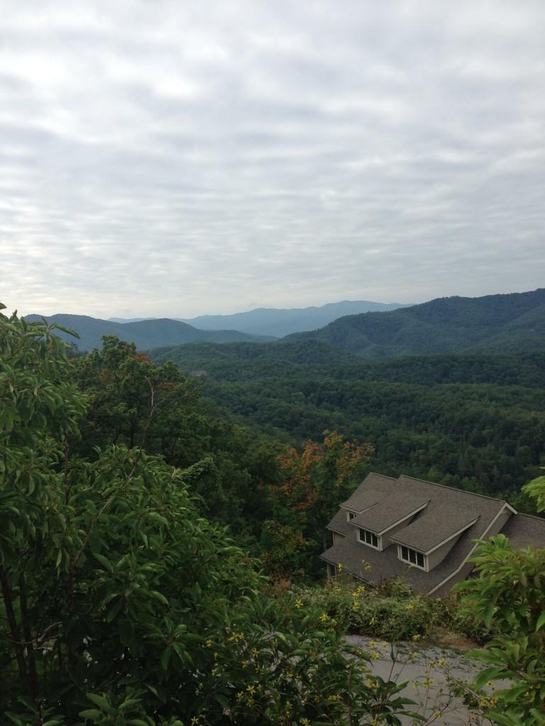 Wears Valley Views