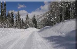 winter_001