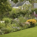 privacy layered planting