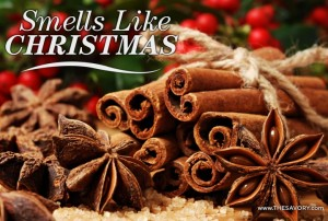 Add Seasonal Scents! I personally could spend a whole month's salary just in candles.  While I recognize I have a candle addiction, I think that certain smells can truly open windows to the old memories of your soul.  Some an even take you back to that perfect Christmas morning when the air was crisp, and you immediately start to smell candy canes, evergreens, and cinnamon!