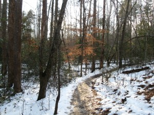 The Upstate and local mountains are often covered with snow making for beautiful scenery.  Such is the case for Paris Mountain State Park in Greenville, SC