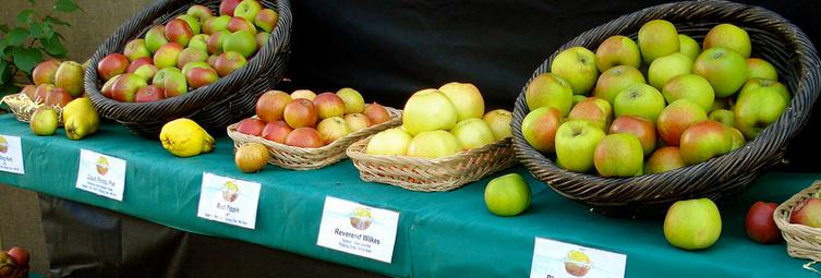 Hendersonville Apple Festial