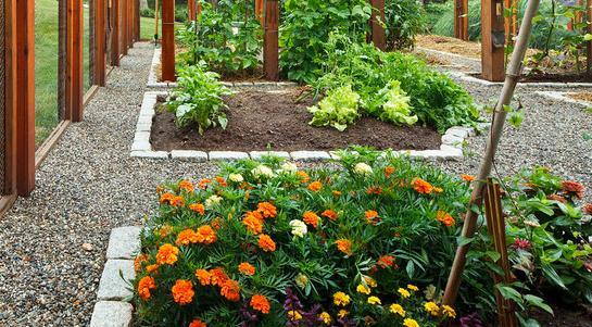 Hendersonville Home Organic Garden