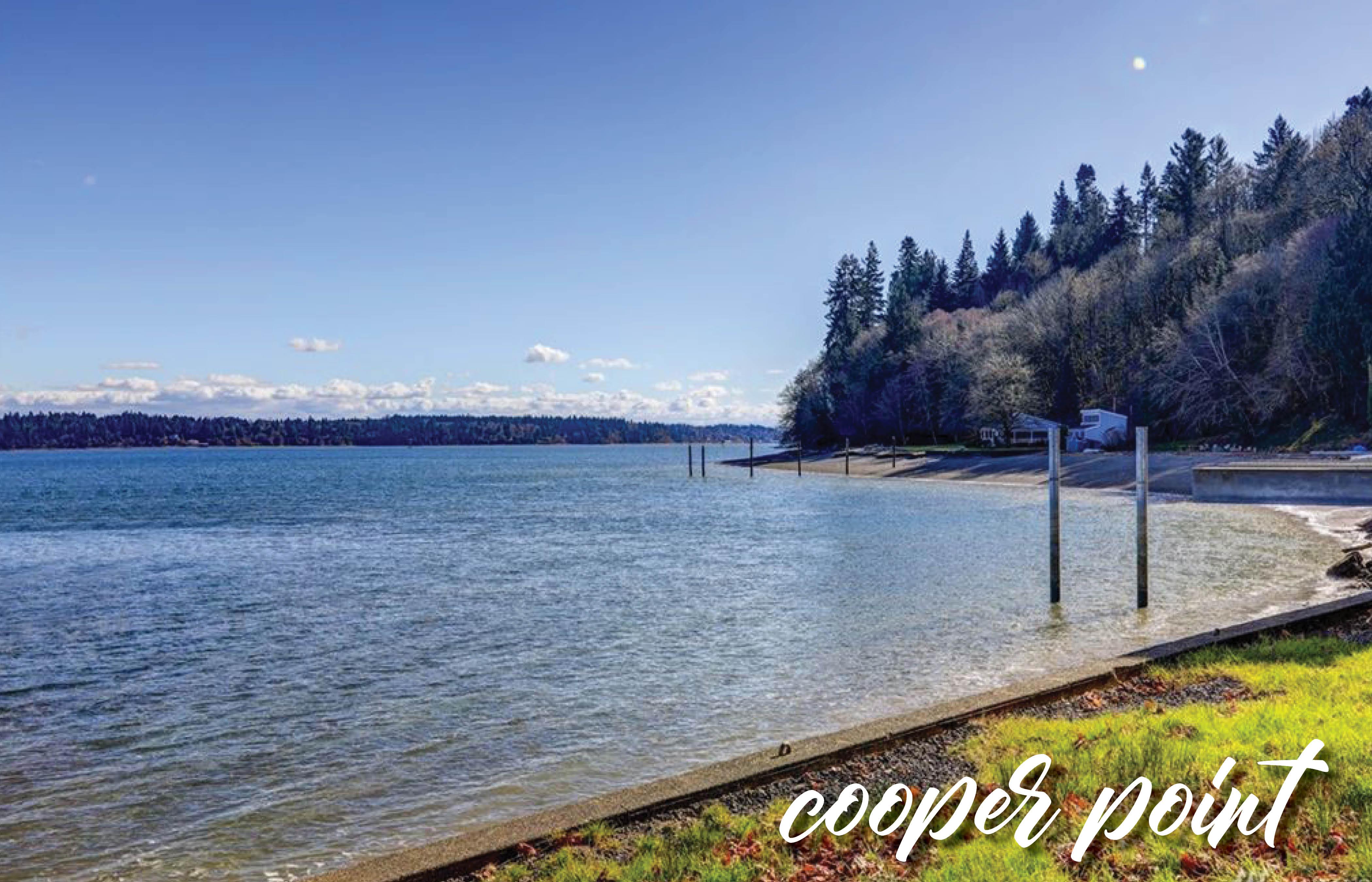 Cooper Point | Washington Real Estate :: Northwest Home Team