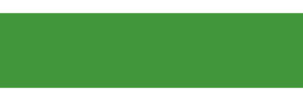 Northwest Home Team Realty, LLC Logo