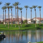 Sun City Lake with Palm Trees