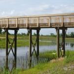 Paradise Creek Nature Park - Portsmouth