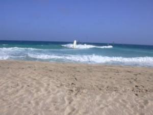 ocean-view-beach-picture