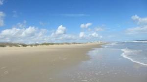 sandbridge-beach