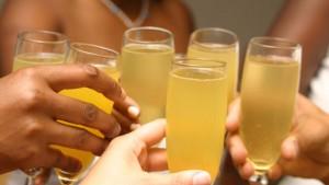 mimosa-resized