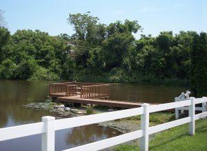 gw-pond-2-06-03-08