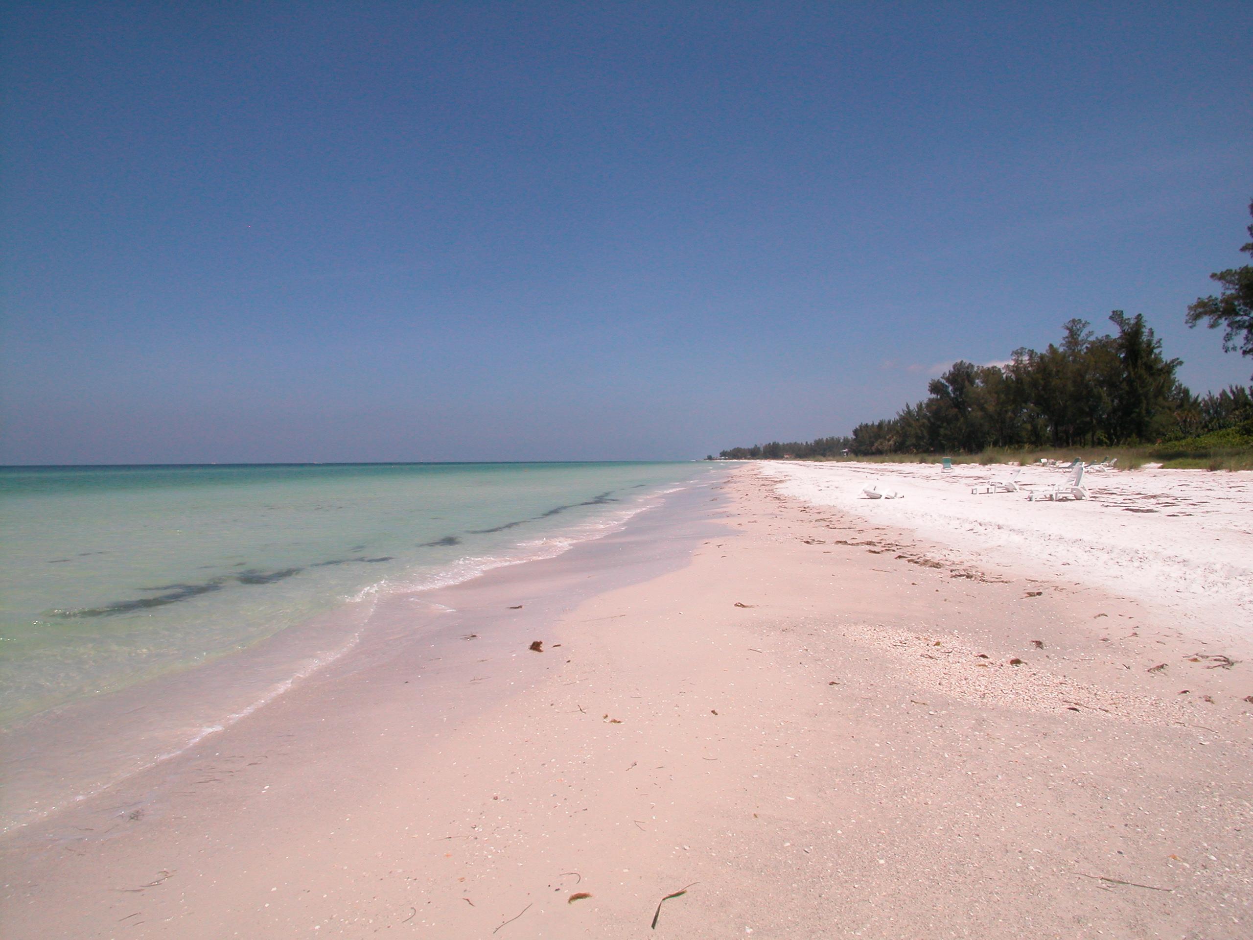 Beach-Longboat-Key-Siesta-Key-Sarasota (76)