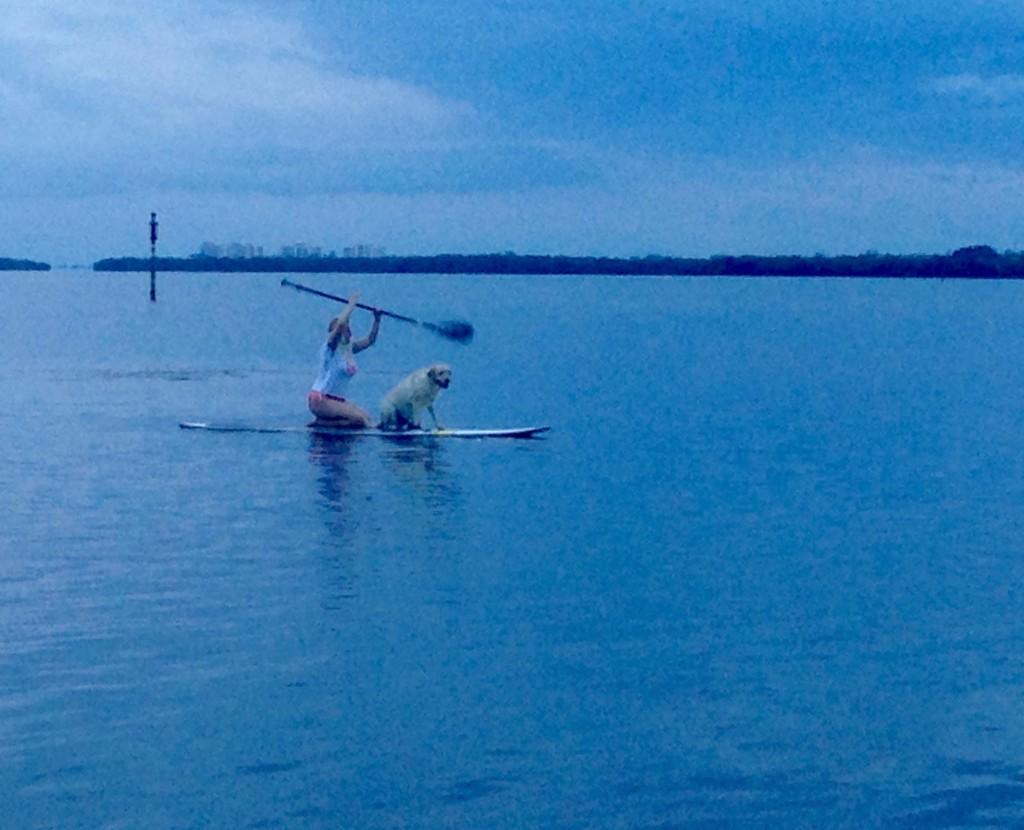 Dog Friendly Longboat Key Bay