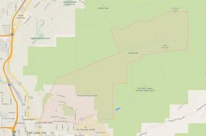 avenues map