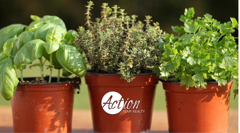 Herb Garden ATR Center