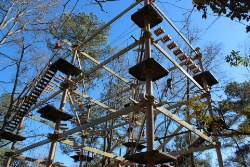 Zoo Sky High Challenge