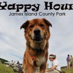 Yappy Hour James Island County Park