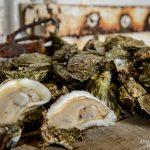 coastal-oyster-roast