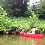 White's Ferry canoeing troubles