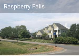 Raspberry Falls neighborhood, Leesburg neighborhood, Raspberry Falls homes for sale, Raspberry Falls real estate agent, Raspberry Falls Real estate, Leesburg Real estate