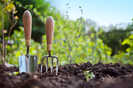 Looking for a Fun DIY Project This Spring? How to Plant Your