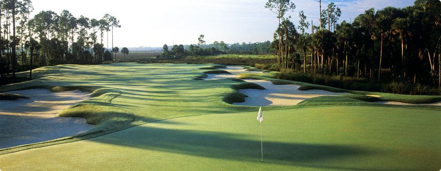 creek course hammock dunes and the creek golf courses   palm coast real estate      rh   searchpalmcoastproperties