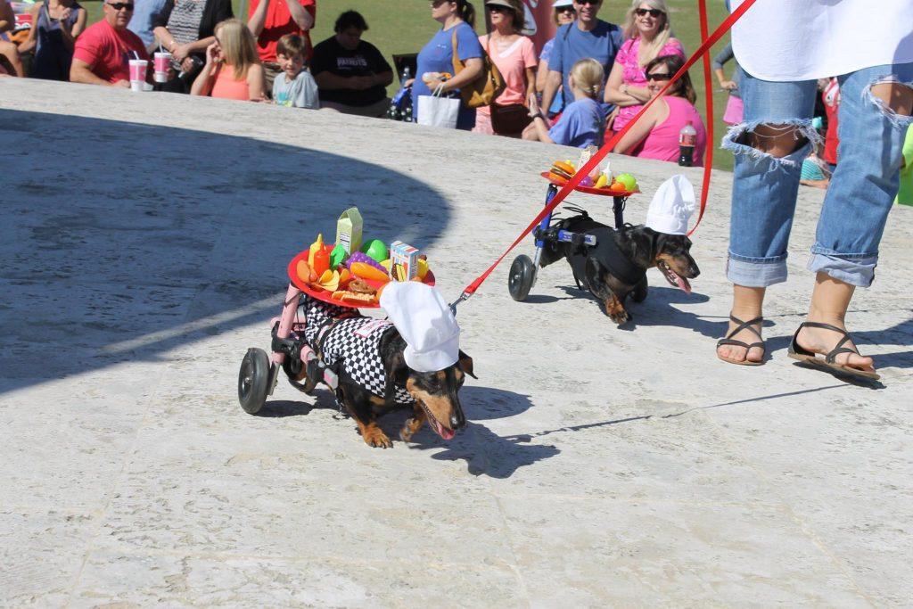 Seaside Halloweener Derby Day