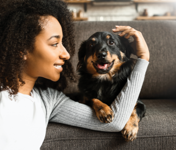 Guide to Selling a Home in Ann Arbor with Pets