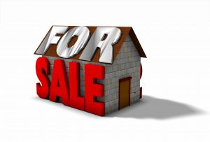 home for sale winter