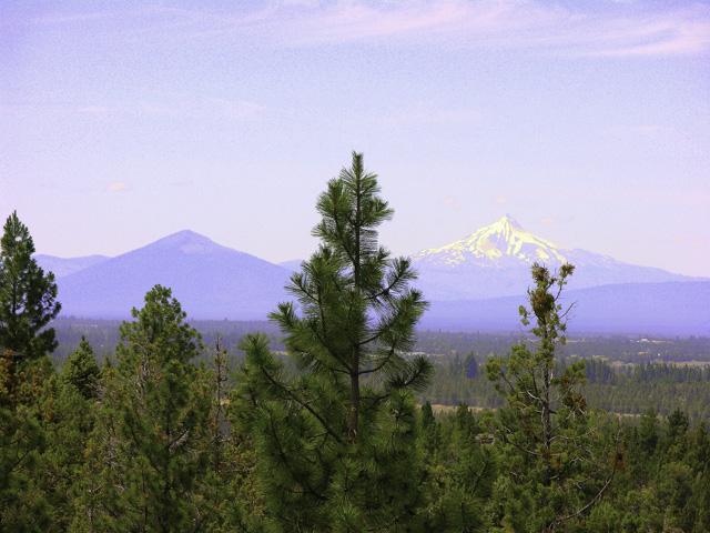 Incredible Cascade Mountain range views!