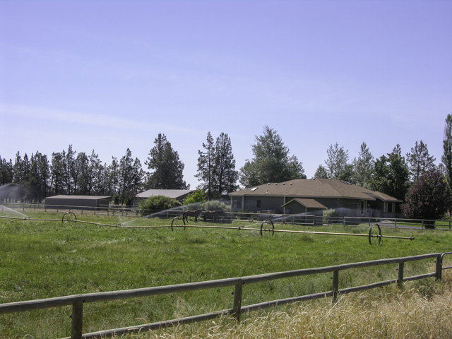 Home on 5+ Acres and Professional Horse Facility!