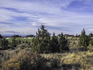 Level half-acre home site with Gorgeous Cascade Mountain and Golf Course views, in Beautiful Brasada Ranch.