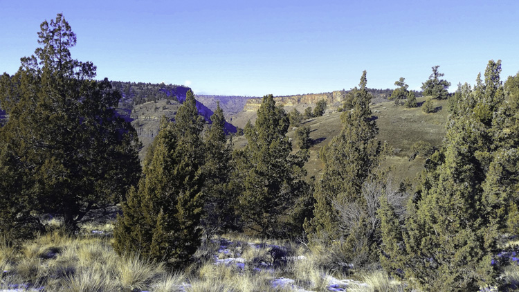 Unique 7.4 Acre Home Site with Mountain and River Views!