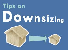 downsizid house 2