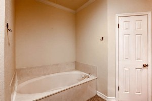 12201 Painted Bunting Dr-small-016-6-Master Bathroom-666x444-72dpi