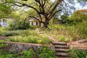 1022 Bonham Terrace Austin TX-large-002-1-Exterior Front-1500x1000-72dpi