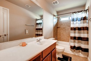17200 Bridgefarmer Blvd-large-022-13-Bathroom-1500x1000-72dpi